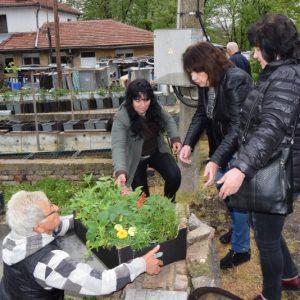 """Фондация """"Ген. Протогеров"""" дари над 2000 стръка цветяна за детските заведения в Горна Оряховица"""
